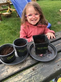 Lorelei prépare ses semis