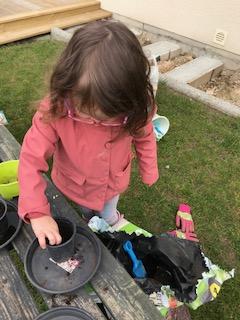 Lorelei plante une graine