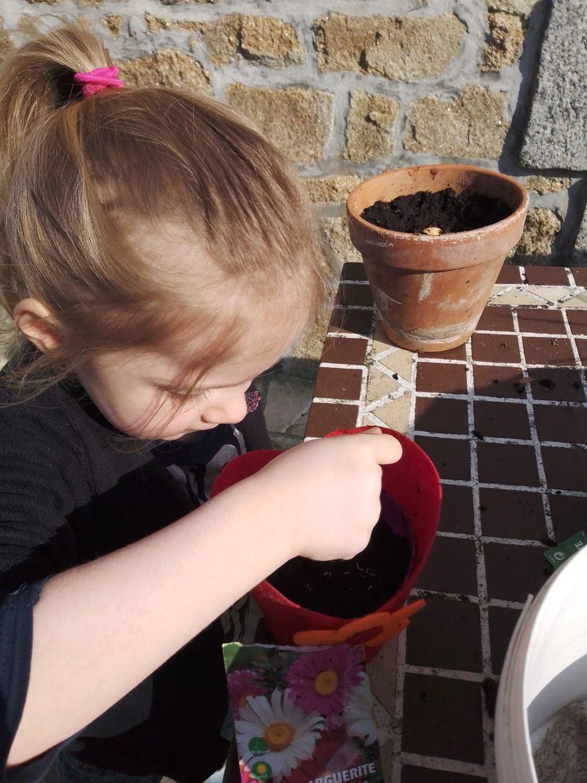 Azénor plante une autre graine